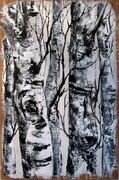 Birches 2  22X28   acrylic